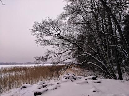 20180120-Winter_28.jpg