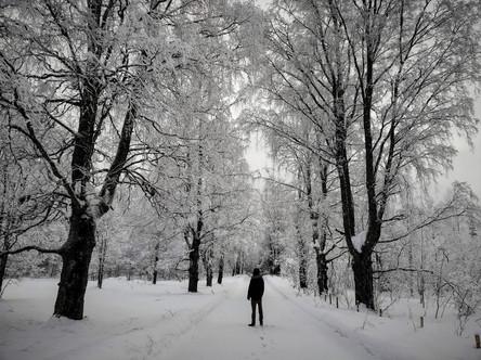 20180128-Winter_32.jpg