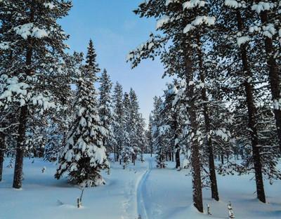 20171214-Winter_2.jpg