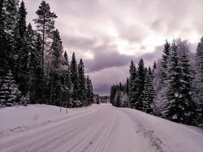 20180128-Winter_41.jpg
