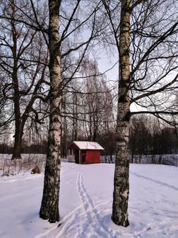 20180218-Winter_46.jpg
