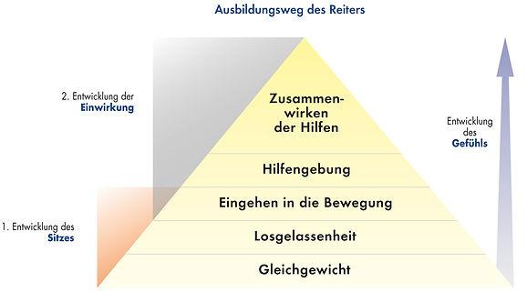 Ausbildungsweg_des_Reiters.jpg