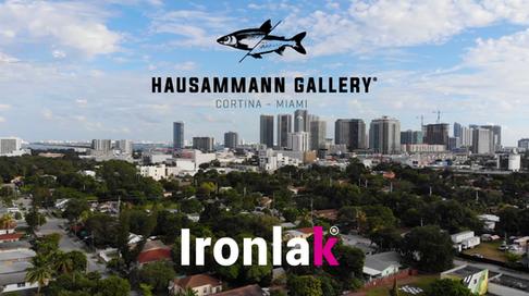 Ironlak X Haussmann gallery