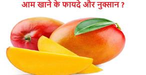 आम खाने के फायदे और नुक्सान-Aam khane ke fayde aur nuksaan