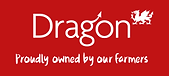 dragon-logo-caption-en_gb.png