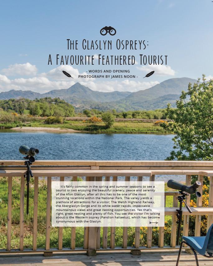 Glaslyn Ospreys pg1.jpg