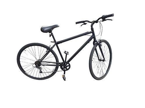Bike Rentals & Accessories