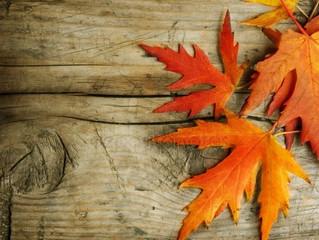 FOLLOW-UP: My Fall 2018 ReConnection Crusade