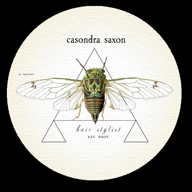 Saxon Hair Stylist Logo