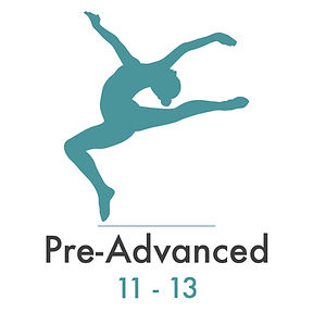 pre-advanced.jpg