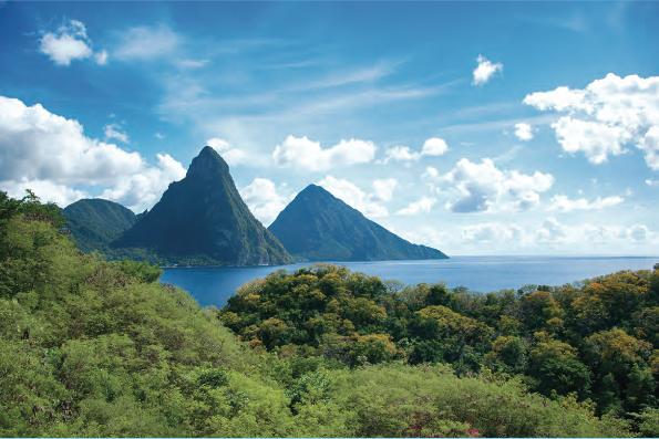 Lush St Lucian Landscape