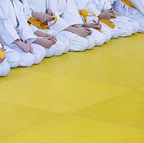 Artes marciais alunos