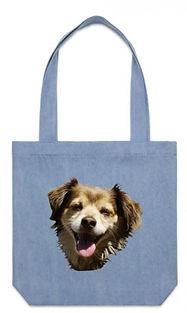 Blue bag.JPG