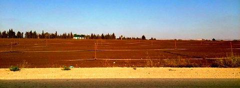 הערכת שווי של קרקע חקלאית לפי תקן 22