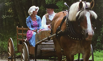 Horse and Buggy.5X3.jpg