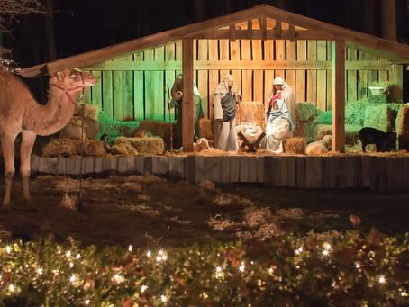 Live Nativity - December 19