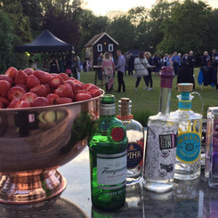Gin by the River