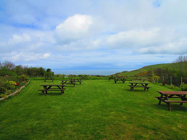 Barn cafe Beer Garden | Exmoor Coast Holidays at Caffyns Farm