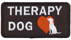 certified trainer and evaluator for therapy dog