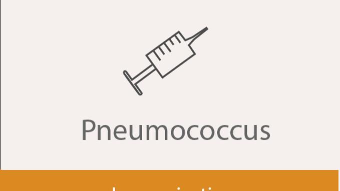 Pneumococcal Immunisation