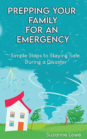 E-Book cover png.png