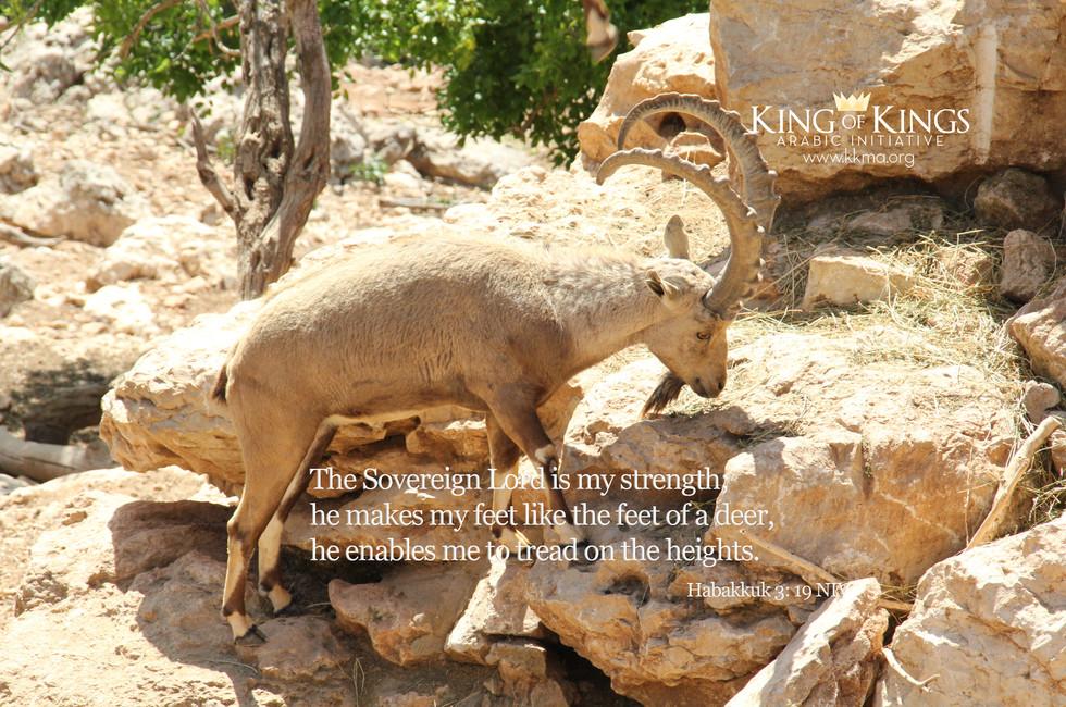 Habakkuk 3- 19.jpg
