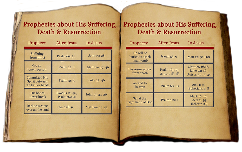 Prophises about Jesus 3.png