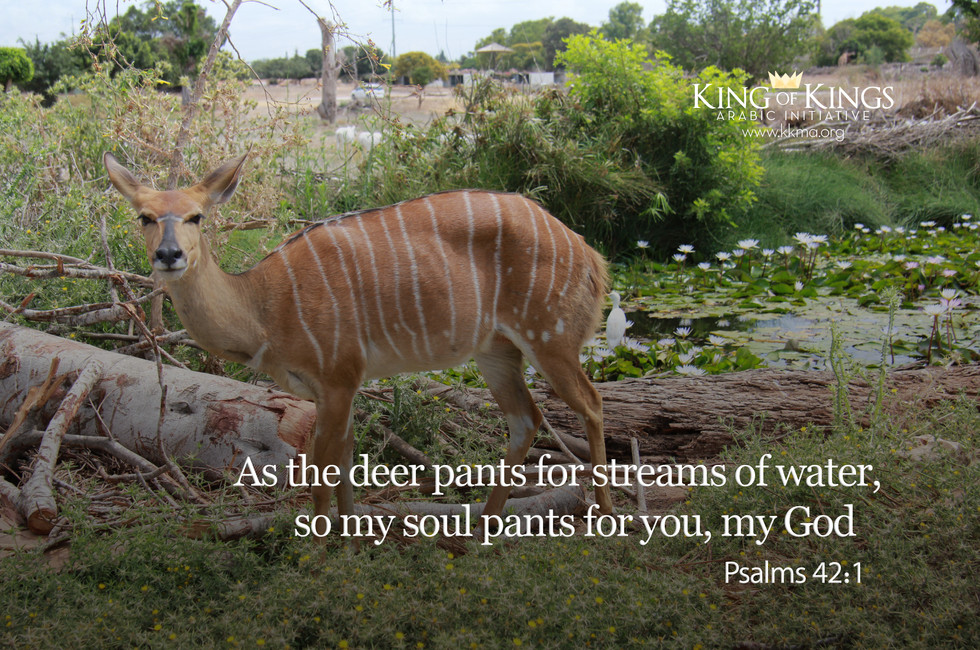 Psalms 42- 1.jpg