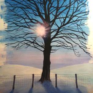 Sunshine Through a Winter Tree - 2014