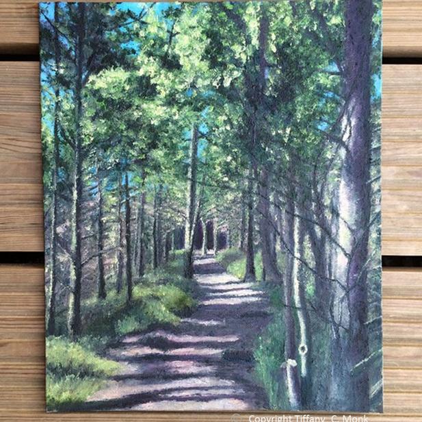 Forest Walk - 2015