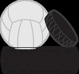 valmis-Logo-cuckoo copy.png