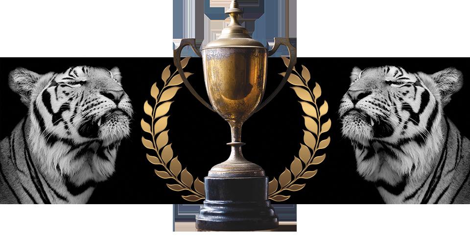 Riitan-nettisivut-awards-960x300-300-dpi