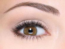 treatment-eyebrow-embroidery.jpg