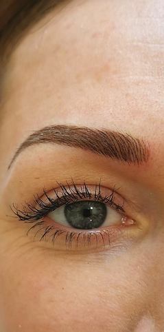 Combination Brow Microblading Permanent Makeup Eyebrows PhiBrows Shading Hairstrokes PhiArtist Elizabeth Oakes