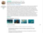 Bahamas Boat Rental Review