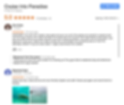 Cruise Into Paradise, Google Review