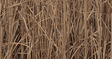 Hunting Camouflage - Brown Reeds preview