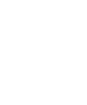 40 Stories logo Jesus face stencil white face clear bg 25%.png