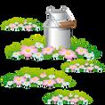 koxintox-carolinepillet-stickers-fille-e