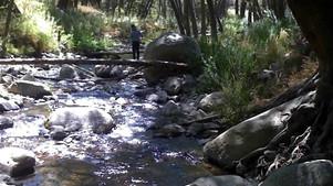 Piano Sonata #12 in C minor - Quasi una Fantasia (Reflections on Water)