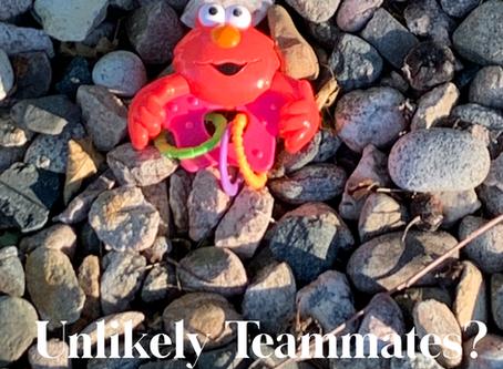 Unlikely Teammates?:  Healthy Babies and Sick Elders