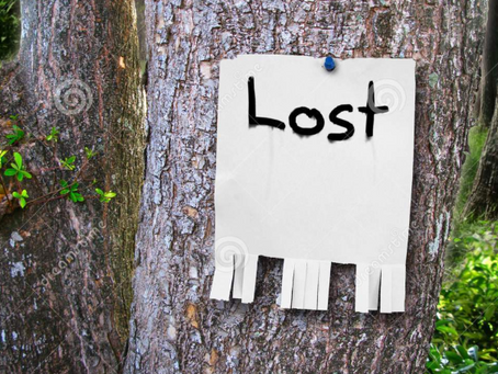 Losing and Being Lost