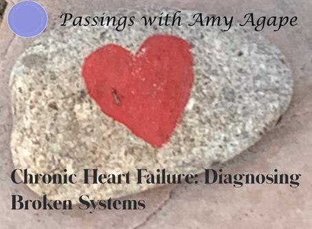 Chronic Heart Failure:  Diagnosing Broken Systems