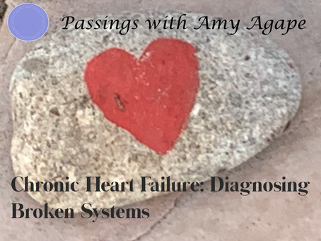 Chronic Heart Failure:  Diagnosing Broken Systems