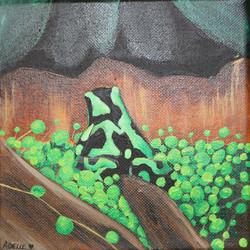 Green Froggie