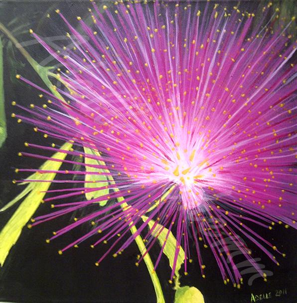 Bursting Pink