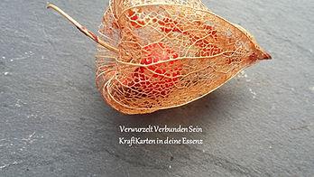 DeckblattSeite_VerwurzeltVerbundenSein.j