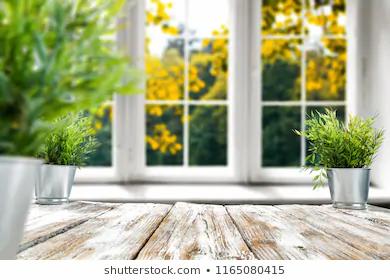 GREEN SMART WINDOWS & DOORS REGINA