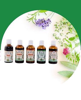 חנות טבע לצמחי מרפא