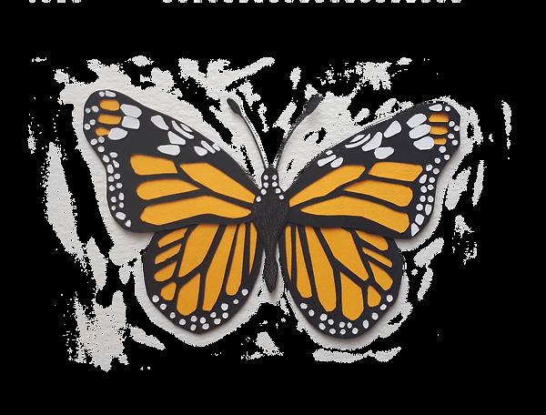 monarch_a_transparent_background.png
